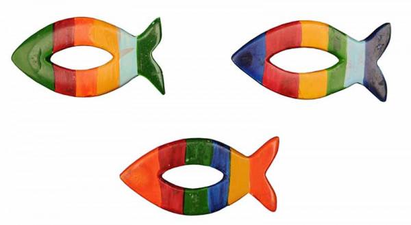 Regnebogenfisch, 3er-Set